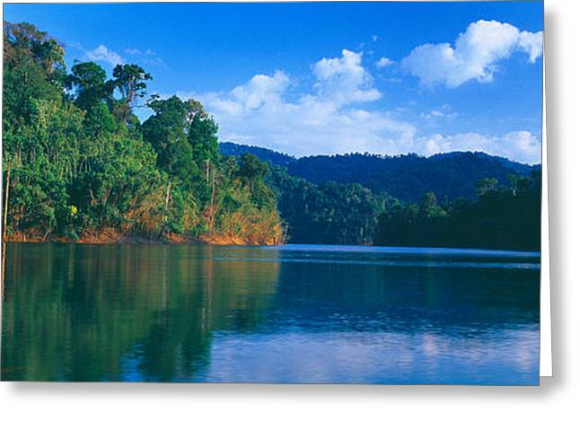 Autumn Colors Greeting Cards - Trees At The Lakeside, Chiaw Lan Lake Greeting Card by Panoramic Images