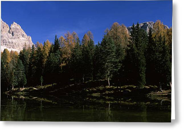 Reflections Of Sky In Water Greeting Cards - Trees At The Lakeside, Lake Misurina Greeting Card by Panoramic Images