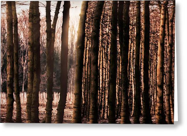 Recently Sold -  - Creepy Digital Art Greeting Cards - Trees Gathering Greeting Card by Wim Lanclus