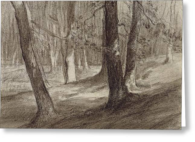 Trees In A Forest Greeting Card by Jean-Francois Millet