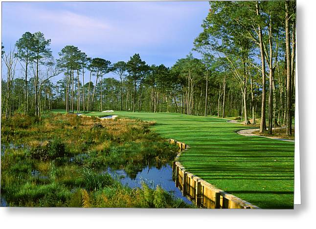Trees In A Golf Course, Kilmarlic Golf Greeting Card by Panoramic Images