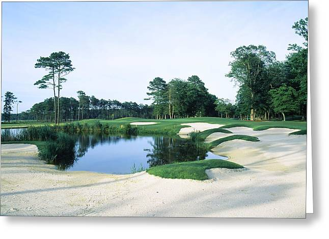 Yacht Club Greeting Cards - Trees In A Golf Course, Ocean City Golf Greeting Card by Panoramic Images