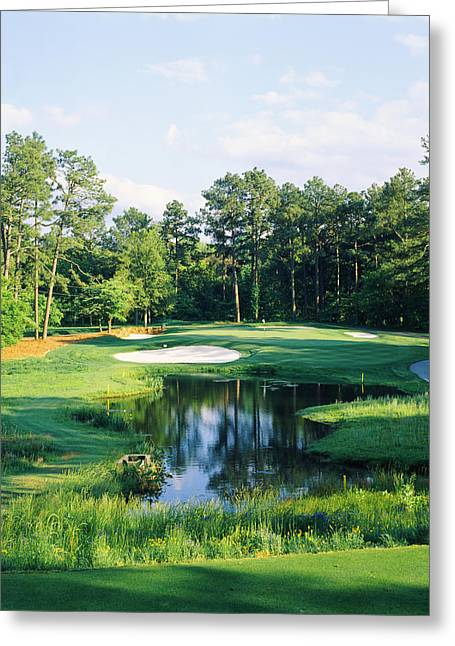Pine Needles Greeting Cards - Trees In A Golf Course, Pine Needles Greeting Card by Panoramic Images