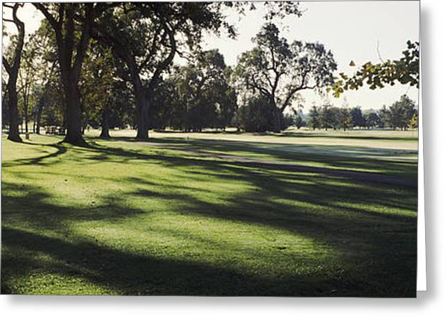 Napa Valley Greeting Cards - Trees In A Golf Course, Silverado Greeting Card by Panoramic Images
