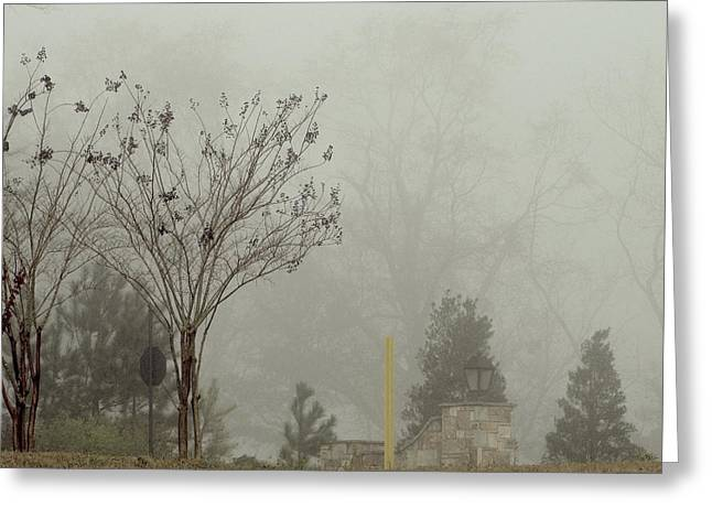 Mystic Setting Greeting Cards - Trees in foggy morning Greeting Card by A J