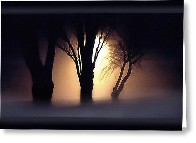 Night Lamp Mixed Media Greeting Cards - Trees in Midnight Fog Greeting Card by Steve Ohlsen