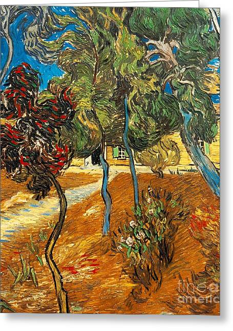 Arles Paintings Greeting Cards - Trees in the Asylum Gardens Greeting Card by Vincent Van Gogh