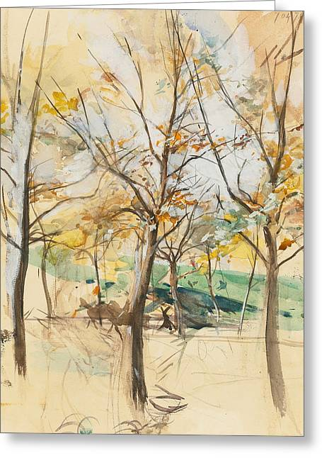Trees In The Bois De Boulogne Greeting Card by Giovanni Boldini