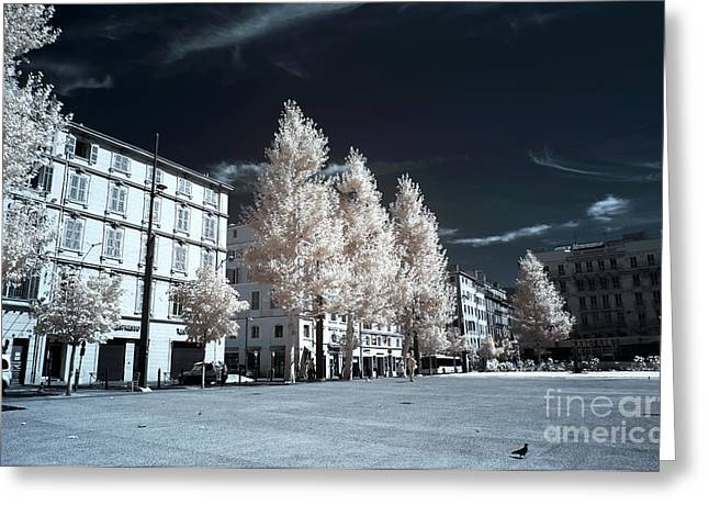 D.w Greeting Cards - Trees in the City Greeting Card by John Rizzuto