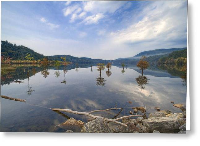 Reflections In River Greeting Cards - Trees in the Lake Greeting Card by Debra and Dave Vanderlaan