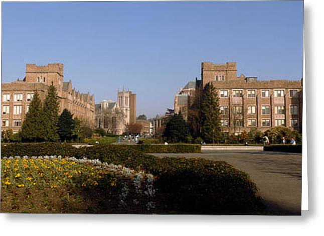 Quad Greeting Cards - Trees In The Lawn Of A University Greeting Card by Panoramic Images