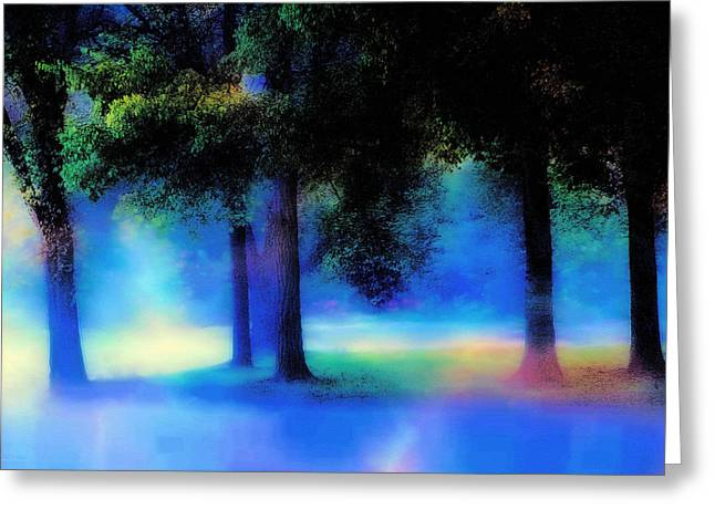 Sunlit Door Greeting Cards - Trees in the Mist Greeting Card by Barbara D Richards