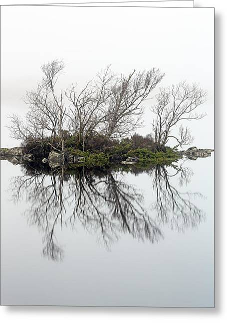 Lochan Greeting Cards - Trees in the mist Greeting Card by Grant Glendinning