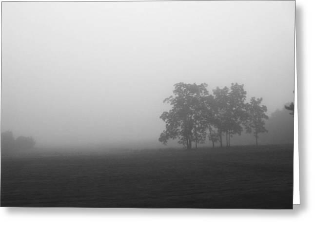 Rhonda Barrett Greeting Cards - Trees in the Mist Greeting Card by Rhonda Barrett
