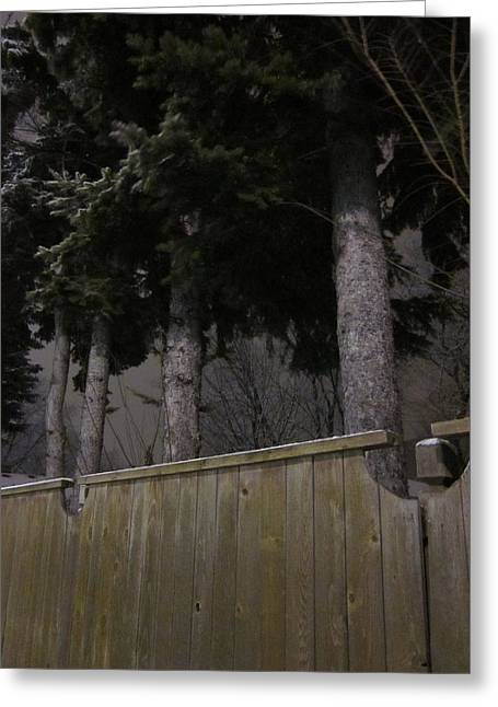 Guy Ricketts Photography Greeting Cards - Trees Make Silent Neighbors Greeting Card by Guy Ricketts