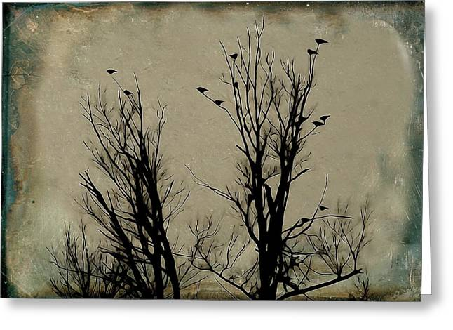Bird In Tree Greeting Cards - Trees Of Grunge Greeting Card by Gothicolors Donna Snyder