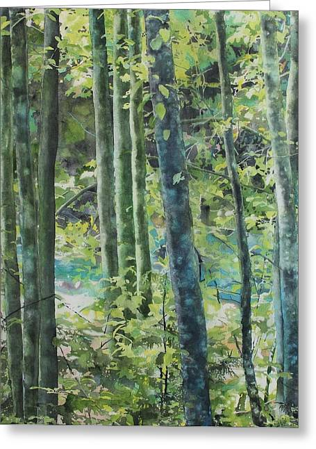 North Vancouver Paintings Greeting Cards - Trees of Riverbank Greeting Card by Sandrine Pelissier