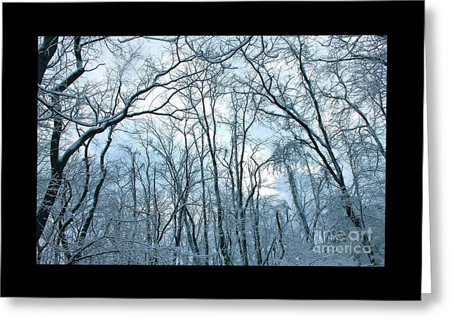 Snowy Day Greeting Cards - Trees of Winter 1 Greeting Card by Marie Spence