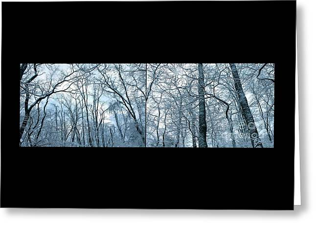 Snowy Day Greeting Cards - Trees of Winter  Greeting Card by Marie Spence