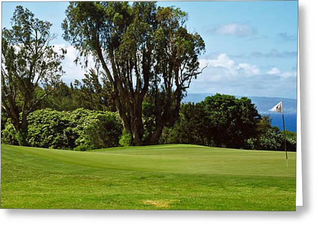 Ocean Photography Greeting Cards - Trees On A Golf Course, Kapalua Golf Greeting Card by Panoramic Images