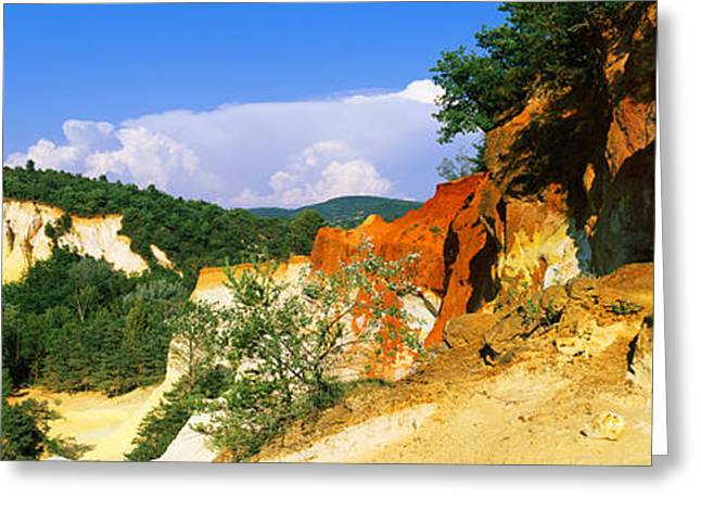 Provencal Greeting Cards - Trees On A Hill, Colorado Provencal Greeting Card by Panoramic Images