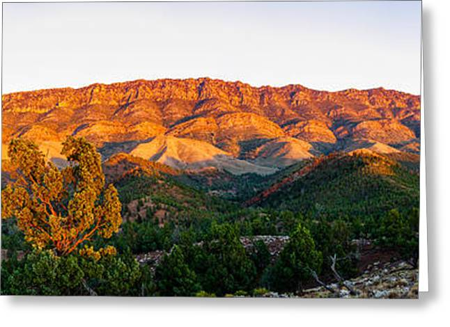 Geology Photographs Greeting Cards - Trees On A Hill, Flinders Ranges Greeting Card by Panoramic Images