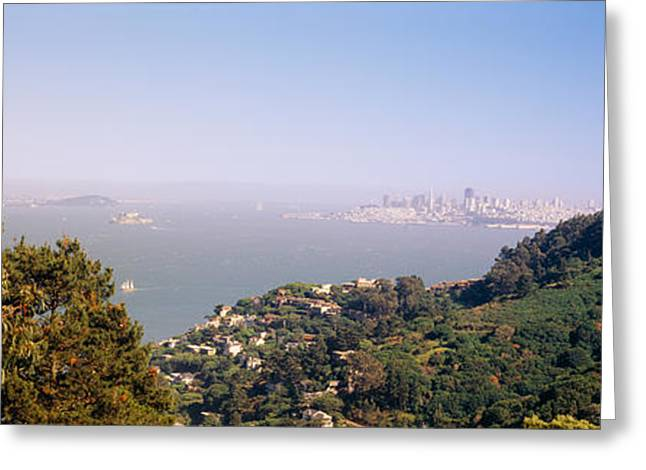 Marin County Greeting Cards - Trees On A Hill, Sausalito, San Greeting Card by Panoramic Images