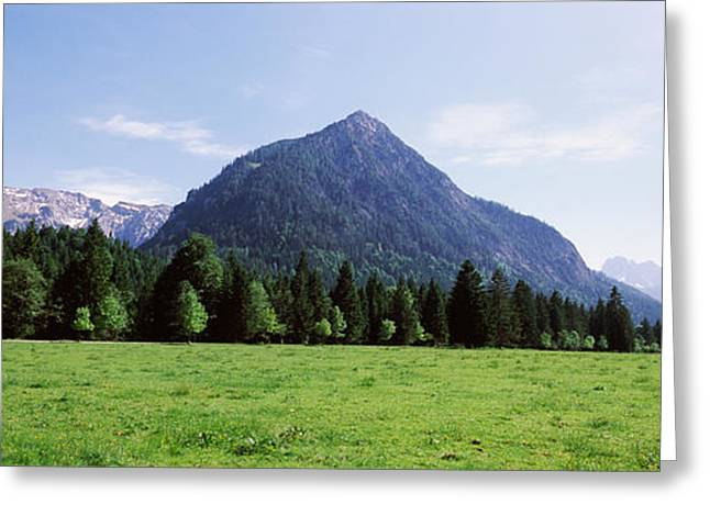 Mountain Greeting Cards - Trees On A Hill With Mountain Range Greeting Card by Panoramic Images