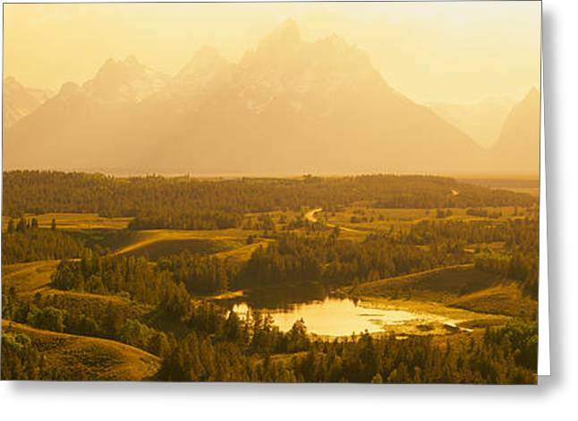 Park Scene Greeting Cards - Trees On A Landscape With A Mountain Greeting Card by Panoramic Images