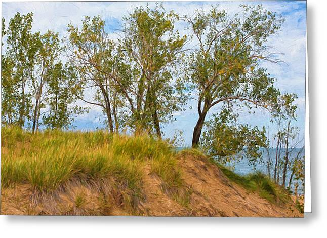 Indiana Flowers Greeting Cards - Trees on a Sand Dune Overlooking Lake Michigan Greeting Card by John Bailey