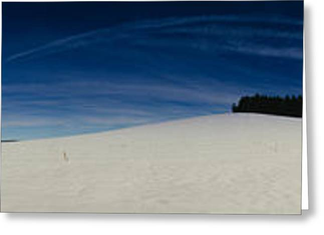 Bare Trees Greeting Cards - Trees On A Snow Covered Landscape, St Greeting Card by Panoramic Images