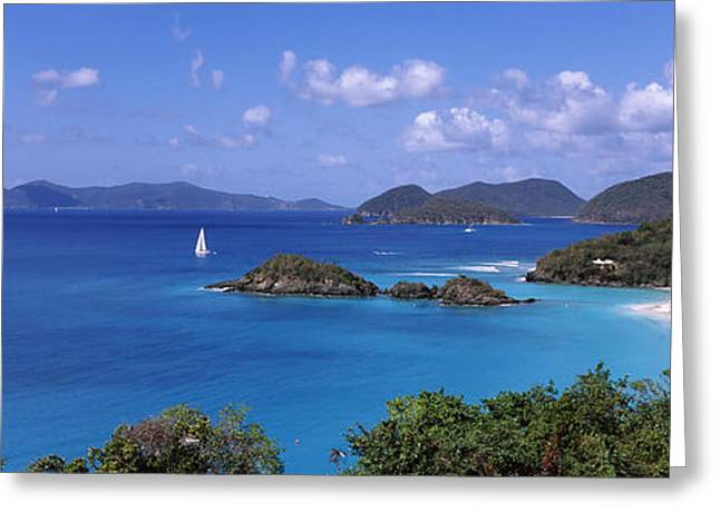Sailboat Images Greeting Cards - Trees On The Coast, Trunk Bay, Virgin Greeting Card by Panoramic Images