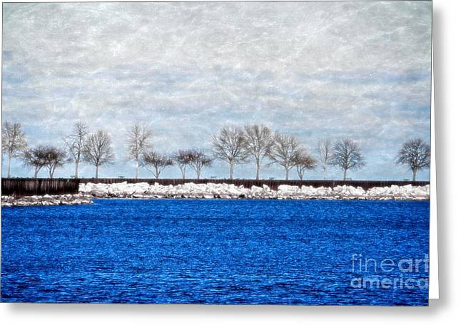 Trees On The Edge Greeting Card by Mary Machare