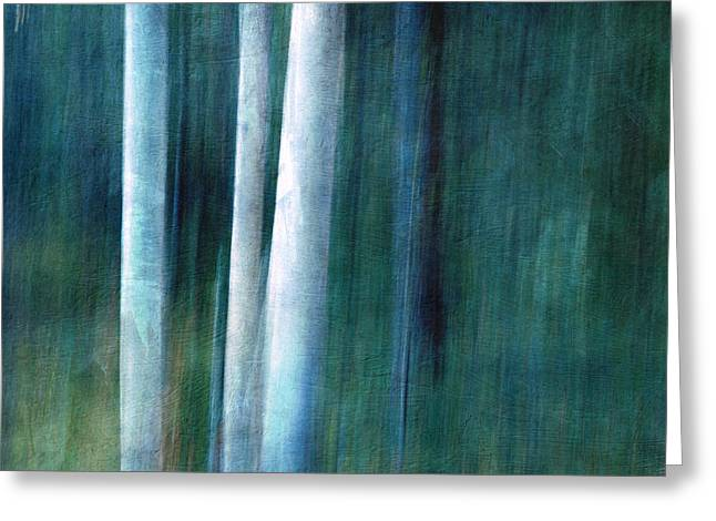 Nature Abstract Greeting Cards - The woods are lovely dark and deep Greeting Card by Priska Wettstein