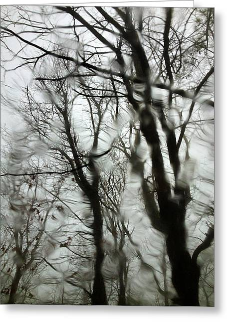 Abstract Rain Greeting Cards - Trees Through the Raindrops Greeting Card by Christina Moore