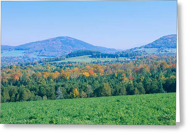 Color Change Greeting Cards - Trees With A Mountain Range Greeting Card by Panoramic Images