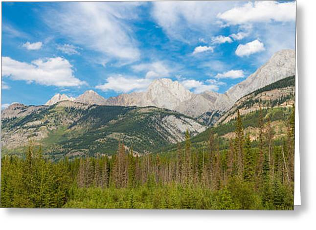 Canadian Rockies Greeting Cards - Trees With Canadian Rockies Greeting Card by Panoramic Images
