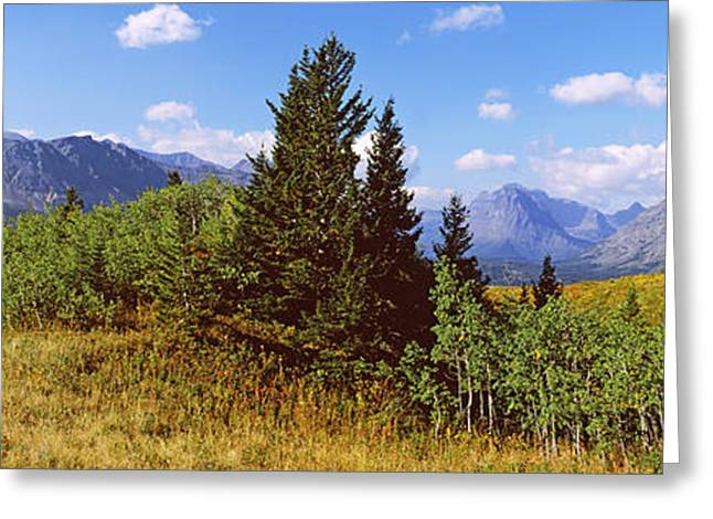 Blue Glass World Greeting Cards - Trees With Mountains In The Background Greeting Card by Panoramic Images