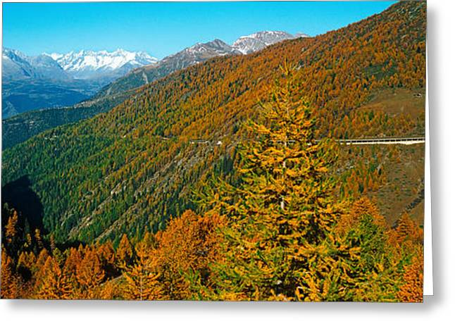 Days Pass Greeting Cards - Trees With Road In Autumn At Simplon Greeting Card by Panoramic Images