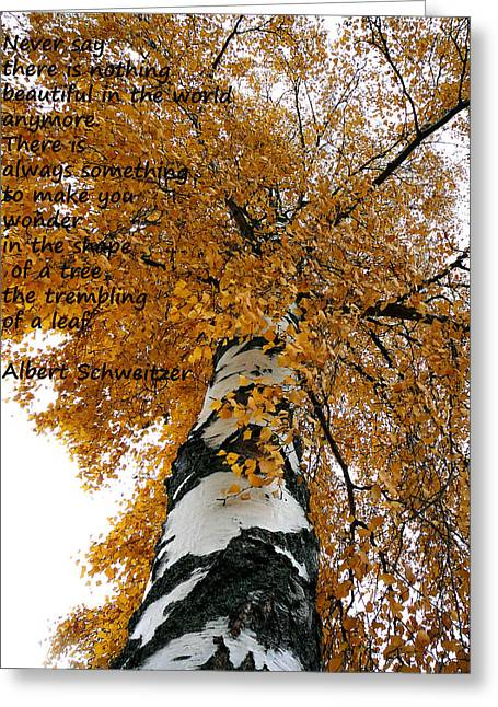 Schweitzer Greeting Cards - Trembling of a Leaf Greeting Card by TwinSoul Eyes
