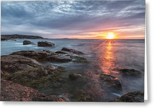 Acadia National Park Photographs Greeting Cards - Trembling on the Shore Greeting Card by Jon Glaser