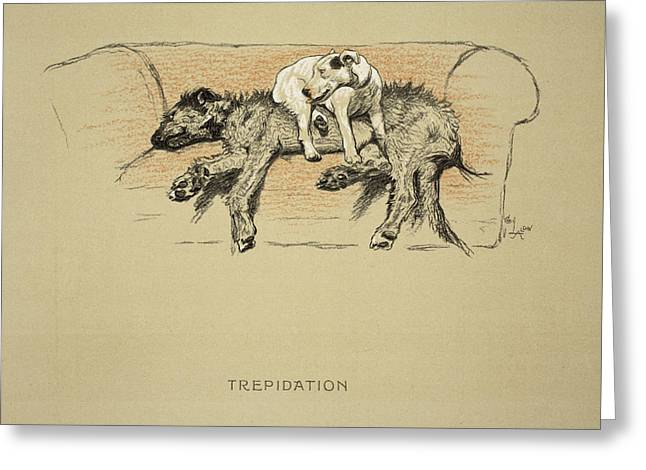 Terrier Dog Drawings Greeting Cards - Trepidation, 1930, 1st Edition Greeting Card by Cecil Charles Windsor Aldin