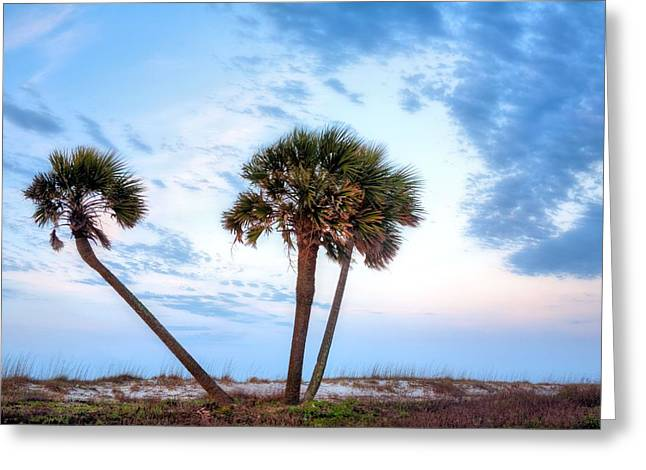 Florida Panhandle Greeting Cards - Tres Amigos in Gulf Shores Greeting Card by JC Findley