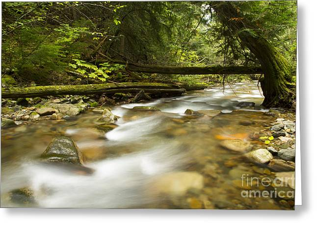 Respite Greeting Cards - Trestle Creek Greeting Card by Idaho Scenic Images Linda Lantzy