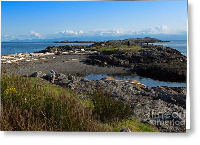 Trial Greeting Cards - Trial Island and the Strait of Juan de Fuca II Greeting Card by Louise Heusinkveld
