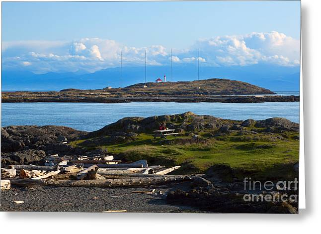 Trial Greeting Cards - Trial Island and the Strait of Juan de Fuca Greeting Card by Louise Heusinkveld
