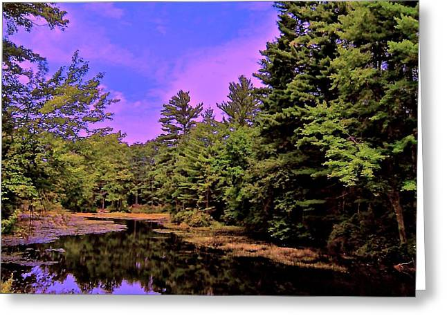 Reflections Of Trees In River Photographs Greeting Cards - Tributary Greeting Card by Elizabeth Tillar