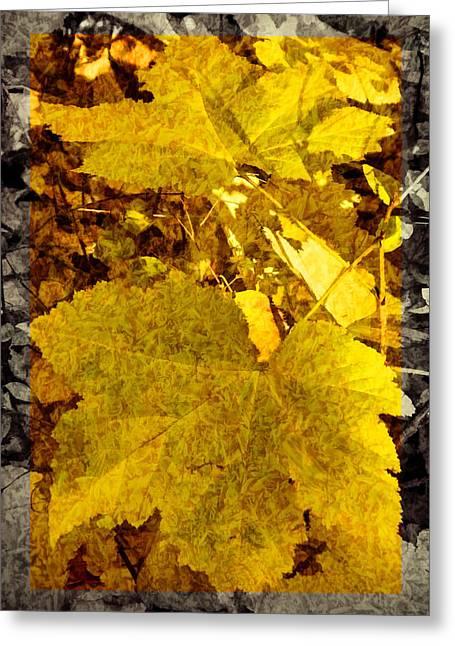 Tribute To Autumn Greeting Card by Jordan Blackstone