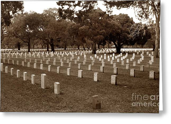 Historic Cemetery Greeting Cards - Tribute To The Fallen Greeting Card by Skip Willits