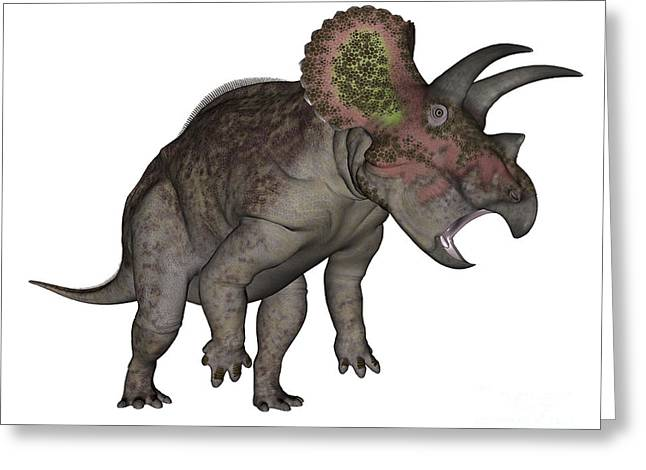 Rearing Up Greeting Cards - Triceratops Dinosaur Standing Up Greeting Card by Elena Duvernay